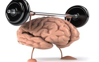 Bygg rätt vägar i hjärnsystemet!